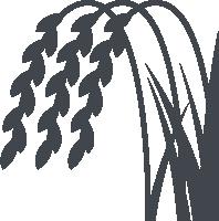 Rice Plant Icon